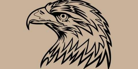Eagle Head Design Free Vector File