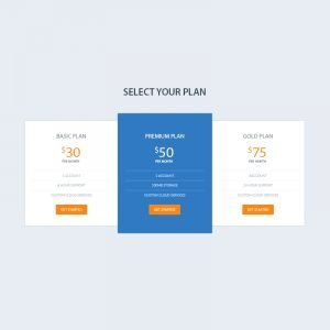 Elegant Pricing Table PSD Design for Website